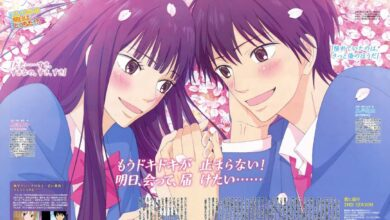 Photo of Kimi ni Todoke (Season 1-2) 1080p Eng Sub HEVC
