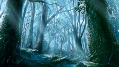 Photo of Mushishi (Season 1-3 + Movie + Special) 1080p Dual Audio HEVC