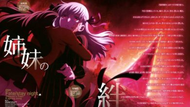 fate-all-series-movies-1080p-dual-audio